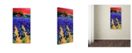 "Trademark Global Marion Rose 'Iris Farm' Canvas Art - 10"" x 19"" x 2"""