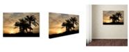 "Trademark Global Mike Jones Photo 'Sunrise Experinemt' Canvas Art - 32"" x 22"" x 2"""