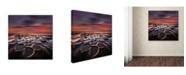 "Trademark Global Moises Levy 'New World' Canvas Art - 24"" x 24"" x 2"""