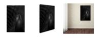 """Trademark Global Moises Levy 'Z0' Canvas Art - 24"""" x 16"""" x 2"""""""