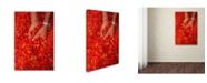"Trademark Global Robert Harding Picture Library 'Pepper Pile' Canvas Art - 24"" x 16"" x 2"""
