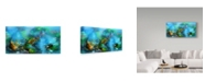 "Trademark Global RUNA 'Coral Reef 34' Canvas Art - 24"" x 12"" x 2"""