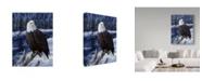 "Trademark Global Jeff Tift 'River Watch' Canvas Art - 24"" x 18"" x 2"""