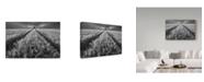 "Trademark Global Piotr Krol 'Alone In The Grass' Canvas Art - 47"" x 2"" x 30"""