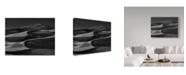 "Trademark Global Yvette Depaepe 'And All Around Is The Desert' Canvas Art - 47"" x 2"" x 35"""