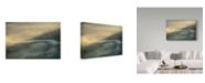 "Trademark Global Vlad Dumitrescu 'Ganduri' Canvas Art - 47"" x 2"" x 30"""