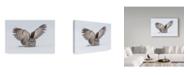 "Trademark Global Salman A 'How Do You Like My Wings' Canvas Art - 19"" x 2"" x 12"""