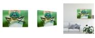 "Trademark Global Petar Sabol 'Morning Pearls 3' Canvas Art - 19"" x 2"" x 12"""