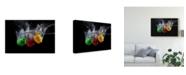 "Trademark Global Mogyorosi Stefan 'Paprika Splash' Canvas Art - 32"" x 2"" x 22"""