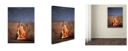 "Trademark Global Moises Levy 'Flame' Canvas Art - 19"" x 14"" x 2"""
