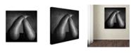 "Trademark Global Moises Levy 'Peras Tiernas' Canvas Art - 24"" x 24"" x 2"""