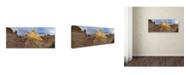 """Trademark Global Moises Levy 'Cottonwood II' Canvas Art - 47"""" x 20"""" x 2"""""""