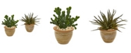 Nearly Natural Aloe and Cactus Succulent Artificial Plant (Set of 2)