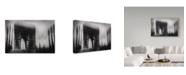 "Trademark Global Oussama Mazouz 'Triumphal Arch' Canvas Art - 24"" x 16"" x 2"""
