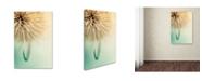 "Trademark Global Nicolino Sapio 'The Claw' Canvas Art - 32"" x 22"" x 2"""