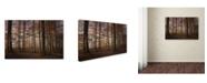 """Trademark Innovations Norbert Maier 'Autumn' Canvas Art - 32"""" x 22"""" x 2"""""""