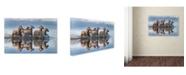 "Trademark Global Xavier Ortega 'Horses And Reflection' Canvas Art - 24"" x 16"" x 2"""