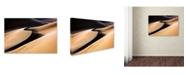 "Trademark Global Mohammadreza Momeni 'Curves In The Sand' Canvas Art - 32"" x 22"" x 2"""