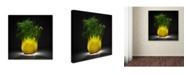 """Trademark Global Wieteke de Kogel 'Fennel' Canvas Art - 24"""" x 24"""" x 2"""""""