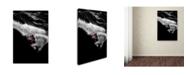 "Trademark Global Tristan Shu 'Dark Freeride' Canvas Art - 32"" x 22"" x 2"""