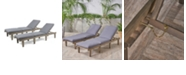 Noble House Ariana Outdoor Chaise Lounge, Set of 2