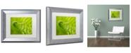 "Trademark Global PIPA Fine Art 'Fern Curl' Matted Framed Art - 11"" x 14"""