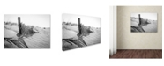 "Trademark Global PIPA Fine Art 'High Key Dunes' Canvas Art - 14"" x 19"""