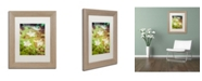 "Trademark Global PIPA Fine Art 'Tranquil Carolina Spring Beauty' Matted Framed Art - 11"" x 14"""