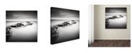 "Trademark Global Rob Cherry 'Washing Ledge' Canvas Art - 14"" x 14"""