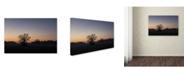 "Trademark Global Kurt Shaffer 'Twilight Silhouette' Canvas Art - 16"" x 24"""