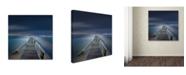 "Trademark Global Moises Levy 'Options Color' Canvas Art - 18"" x 18"""