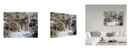 "Trademark Global Ron Parker 'Winter Sage Coyote' Canvas Art - 18"" x 24"""