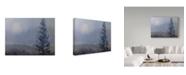 "Trademark Global Rusty Frentner 'Foggy Mornings' Canvas Art - 18"" x 24"""