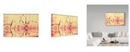 """Trademark Global Incredi 'Macro Reflections' Canvas Art - 19"""" x 12"""""""