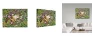 """Trademark Global Jan Benz 'Garden Of Delights' Canvas Art - 24"""" x 18"""""""