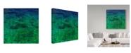 "Trademark Global Jason Matias 'Green Sea Floor' Canvas Art - 14"" x 14"""