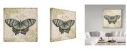 "Trademark Global Jean Plout 'Butterfly Daydreams 4' Canvas Art - 24"" x 24"""