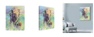 """Trademark Global Michelle Faber 'Mother & Baby Elephant Rainbow Colors' Canvas Art - 14"""" x 19"""""""