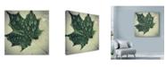 "Trademark Global Nina Marie 'Maple Drops' Canvas Art - 14"" x 14"""
