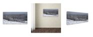 """Trademark Global Kurt Shaffer 'Autumn Snowfall' Canvas Art - 16"""" x 32"""""""