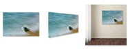 "Trademark Global PIPA Fine Art 'Whelk Seashell and Misty Wave' Canvas Art - 30"" x 47"""