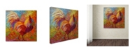 """Trademark Global Marion Rose 'Rooster 6' Canvas Art - 35"""" x 35"""""""