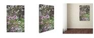 "Trademark Global Kurt Shaffer 'Magnolia Spring' Canvas Art - 22"" x 32"""