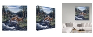 "Trademark Global Jeff Tift 'Peaceful Morning' Canvas Art - 24"" x 24"""