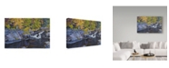 "Trademark Global Rusty Frentner 'Forest Stream' Canvas Art - 30"" x 47"""
