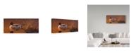"Trademark Global Wilhelm Goebel 'Amber Light Pintail' Canvas Art - 8"" x 19"""