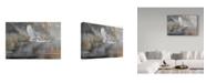 "Trademark Global Wilhelm Goebel 'Sunrise Flight' Canvas Art - 30"" x 47"""