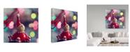 "Trademark Global Incredi 'Ready For Christmas' Canvas Art - 35"" x 35"""