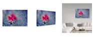 "Trademark Global Incredi 'Red Fragility' Canvas Art - 32"" x 22"""