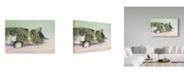 """Trademark Global Janet Pidoux 'Attention Seeker' Canvas Art - 47"""" x 30"""""""
